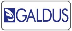 galdus_topformazione