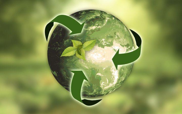 diventare esperto in sistemi integrati qualità ambiente energia e sicurezza