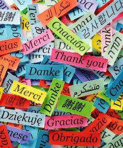 top formazione master per traduttorie interpreti